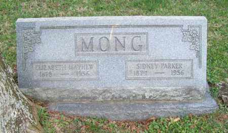 MONG, SIDNEY PARKER - Trumbull County, Ohio | SIDNEY PARKER MONG - Ohio Gravestone Photos