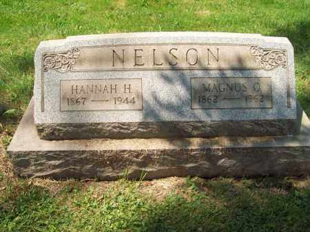 ANDERSON NELSON, HANNAH H. - Trumbull County, Ohio | HANNAH H. ANDERSON NELSON - Ohio Gravestone Photos