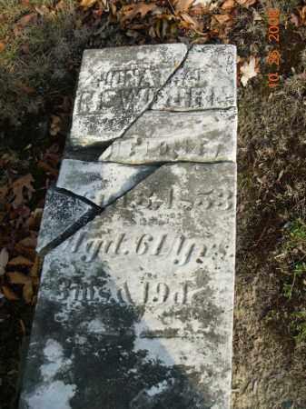 NEWBURN, JONATHAN - Trumbull County, Ohio   JONATHAN NEWBURN - Ohio Gravestone Photos
