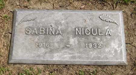 NICULA, SABINA - Trumbull County, Ohio | SABINA NICULA - Ohio Gravestone Photos