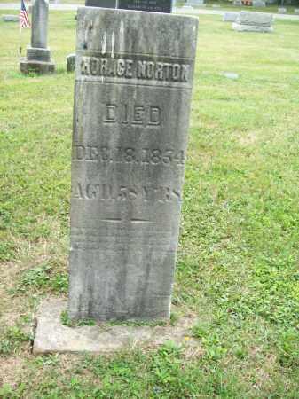 NORTON, HORACE - Trumbull County, Ohio | HORACE NORTON - Ohio Gravestone Photos