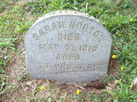 PARKER NORTON, SARAH - Trumbull County, Ohio | SARAH PARKER NORTON - Ohio Gravestone Photos
