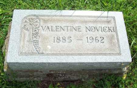 NOVICKI, VALENTINE - Trumbull County, Ohio | VALENTINE NOVICKI - Ohio Gravestone Photos