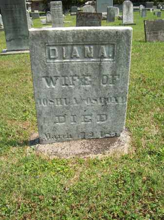 WARNER OSBORN, DIANA - Trumbull County, Ohio | DIANA WARNER OSBORN - Ohio Gravestone Photos