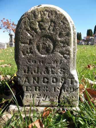 PANCOST, ELMER JAY - Trumbull County, Ohio | ELMER JAY PANCOST - Ohio Gravestone Photos