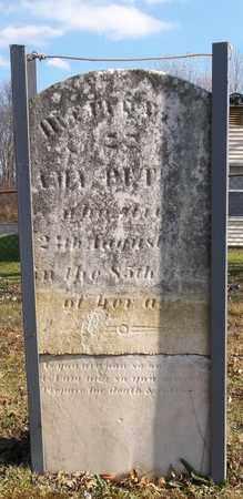 PETTIS, AMY - Trumbull County, Ohio | AMY PETTIS - Ohio Gravestone Photos