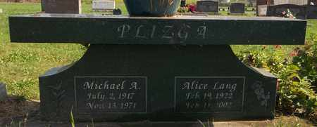 PLIZGA, MICHAEL A. - Trumbull County, Ohio | MICHAEL A. PLIZGA - Ohio Gravestone Photos