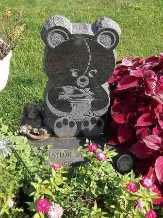 PLIZGA, TAYLOR JAY - Trumbull County, Ohio | TAYLOR JAY PLIZGA - Ohio Gravestone Photos