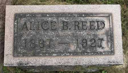 REED, ALICE - Trumbull County, Ohio | ALICE REED - Ohio Gravestone Photos