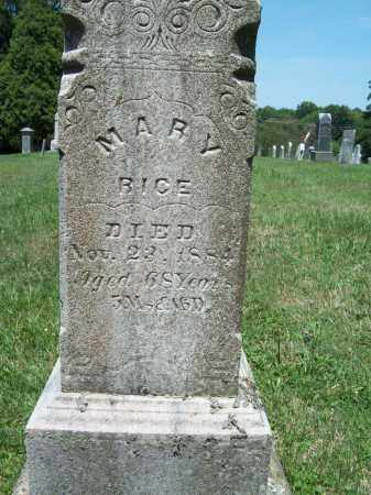 RICE, MARY - Trumbull County, Ohio | MARY RICE - Ohio Gravestone Photos