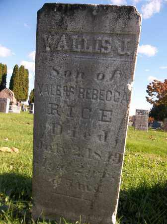 RICE, WALLIS J. - Trumbull County, Ohio | WALLIS J. RICE - Ohio Gravestone Photos