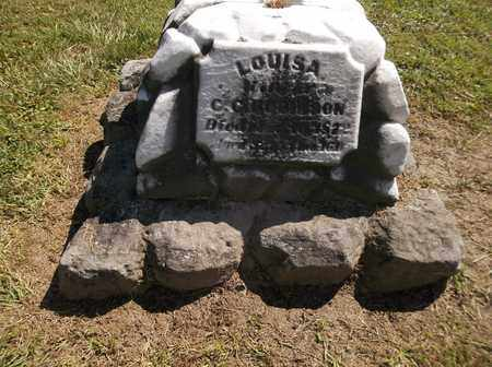 ROBINSON, LOUISA - Trumbull County, Ohio | LOUISA ROBINSON - Ohio Gravestone Photos