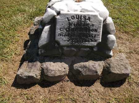 ROBINSON, LOUISA - Trumbull County, Ohio | LOUISA ROBINSON - Ohio Gravestone Photos