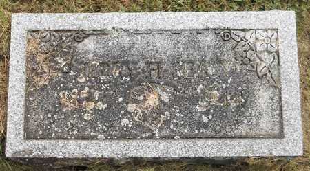 SEALY, JERRY H. - Trumbull County, Ohio | JERRY H. SEALY - Ohio Gravestone Photos
