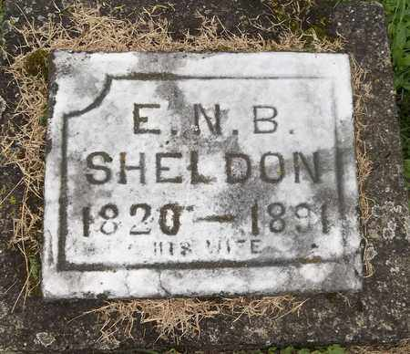 SHELDON, E. N. B. - Trumbull County, Ohio | E. N. B. SHELDON - Ohio Gravestone Photos