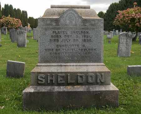 SHELDON, CHARLOTTE - Trumbull County, Ohio | CHARLOTTE SHELDON - Ohio Gravestone Photos