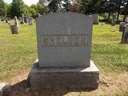 SHELDON, ORPHA E. - Trumbull County, Ohio | ORPHA E. SHELDON - Ohio Gravestone Photos