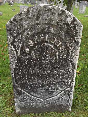 SHELDON, I. B. - Trumbull County, Ohio | I. B. SHELDON - Ohio Gravestone Photos