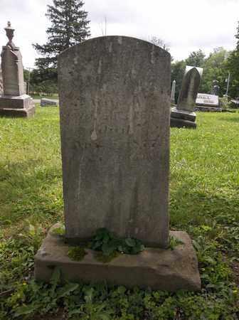 SHEPLER, ABIGAIL - Trumbull County, Ohio | ABIGAIL SHEPLER - Ohio Gravestone Photos