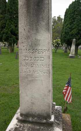 SPERRY, ELIAS - Trumbull County, Ohio | ELIAS SPERRY - Ohio Gravestone Photos