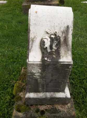 SPERRY, SHIRLEY ELIAS - Trumbull County, Ohio   SHIRLEY ELIAS SPERRY - Ohio Gravestone Photos