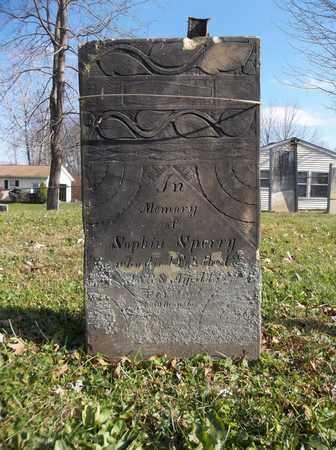 SPERRY, SOPHIA - Trumbull County, Ohio   SOPHIA SPERRY - Ohio Gravestone Photos