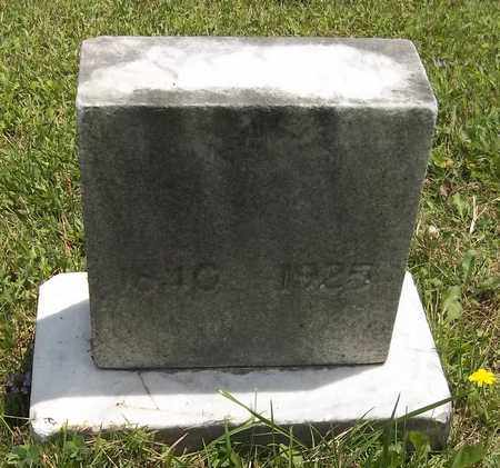 SPRINKLE, SARAH ANN - Trumbull County, Ohio | SARAH ANN SPRINKLE - Ohio Gravestone Photos