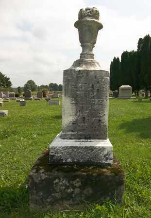 STONE, EMMA - Trumbull County, Ohio | EMMA STONE - Ohio Gravestone Photos