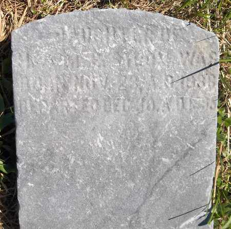 STROM, EMMA C. - Trumbull County, Ohio | EMMA C. STROM - Ohio Gravestone Photos