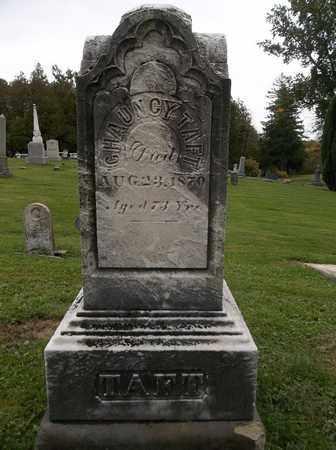 TAFT, CHAUNCY - Trumbull County, Ohio | CHAUNCY TAFT - Ohio Gravestone Photos