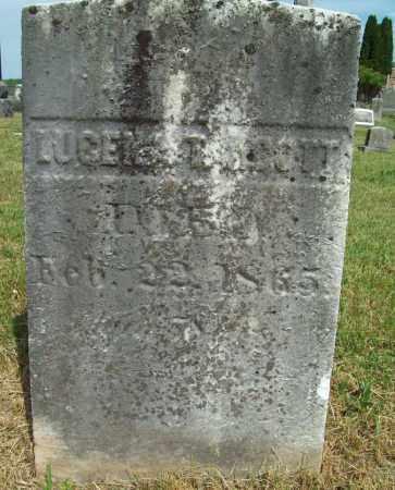 TALCOTT, LUCENA - Trumbull County, Ohio | LUCENA TALCOTT - Ohio Gravestone Photos