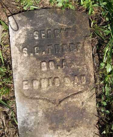 THORP, S. C. - Trumbull County, Ohio | S. C. THORP - Ohio Gravestone Photos