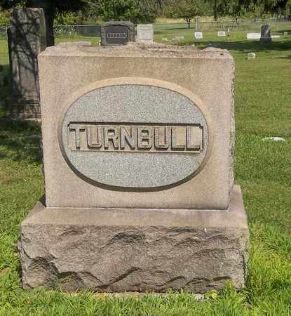 TURNBULL, AMELIA - Trumbull County, Ohio | AMELIA TURNBULL - Ohio Gravestone Photos