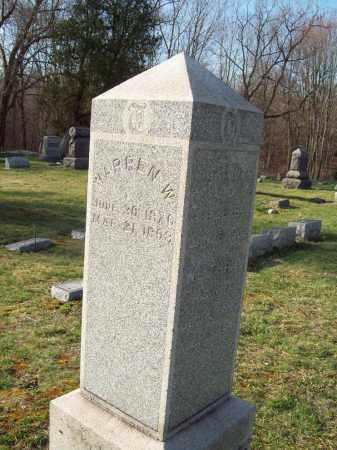 TUTTLE, WARREN W. - Trumbull County, Ohio | WARREN W. TUTTLE - Ohio Gravestone Photos
