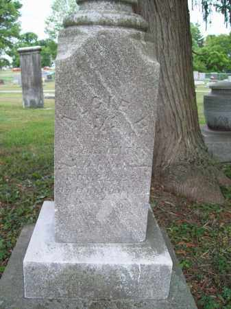 VIETS, ALGIE BURT - Trumbull County, Ohio | ALGIE BURT VIETS - Ohio Gravestone Photos
