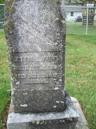 VIETS, LOTTIE - Trumbull County, Ohio | LOTTIE VIETS - Ohio Gravestone Photos