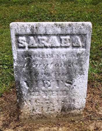 VIETS, SARAH A. - Trumbull County, Ohio | SARAH A. VIETS - Ohio Gravestone Photos