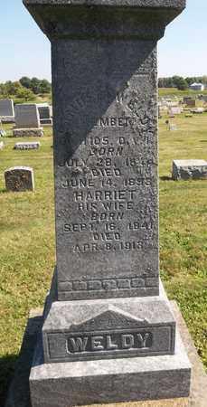 WELDY, SAMUEL - Trumbull County, Ohio | SAMUEL WELDY - Ohio Gravestone Photos