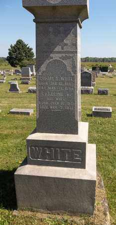 WHITE, CURTIS S. - Trumbull County, Ohio | CURTIS S. WHITE - Ohio Gravestone Photos