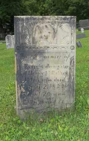 WHITE, ESTHER - Trumbull County, Ohio   ESTHER WHITE - Ohio Gravestone Photos