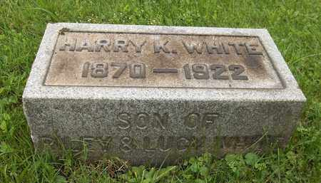WHITE, HARRY K. - Trumbull County, Ohio | HARRY K. WHITE - Ohio Gravestone Photos