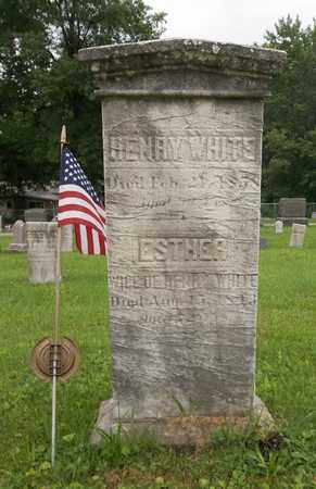 WHITE, HENRY - Trumbull County, Ohio | HENRY WHITE - Ohio Gravestone Photos
