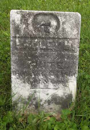 WHITE, HALLEY M. - Trumbull County, Ohio | HALLEY M. WHITE - Ohio Gravestone Photos