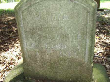 WHITE, LYDIA - Trumbull County, Ohio | LYDIA WHITE - Ohio Gravestone Photos