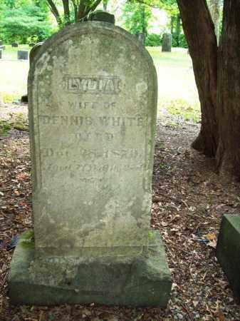 WHITE, LYDIA - Trumbull County, Ohio | LYDIA WHITE - Ohio Gravestone Photos