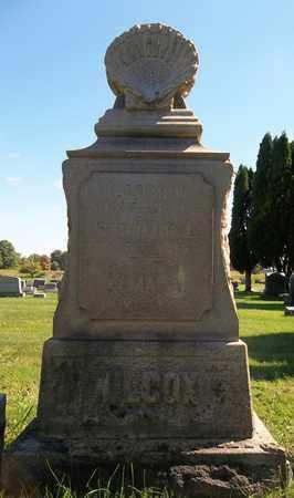 WILCOX, ALASCO W. - Trumbull County, Ohio | ALASCO W. WILCOX - Ohio Gravestone Photos