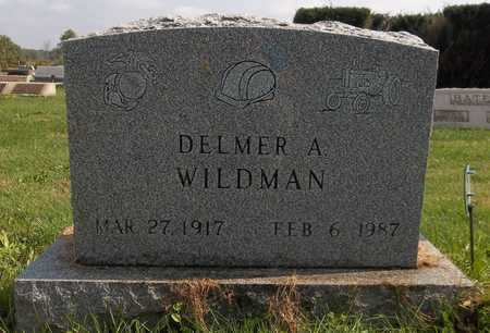 WILDMAN, DELMAR A. - Trumbull County, Ohio | DELMAR A. WILDMAN - Ohio Gravestone Photos