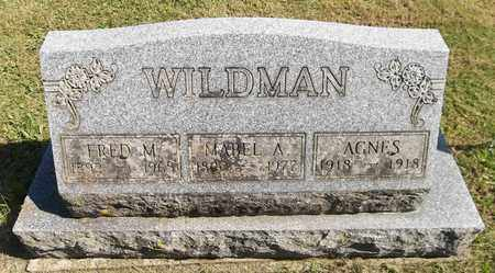 WILDMAN, AGNES - Trumbull County, Ohio | AGNES WILDMAN - Ohio Gravestone Photos