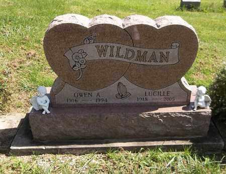 WILDMAN, LUCILLE - Trumbull County, Ohio | LUCILLE WILDMAN - Ohio Gravestone Photos