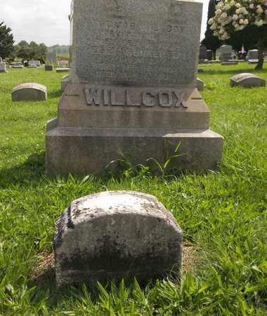 WILLCOX, RHODA M. - Trumbull County, Ohio | RHODA M. WILLCOX - Ohio Gravestone Photos